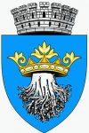 logo-primaria-brasov